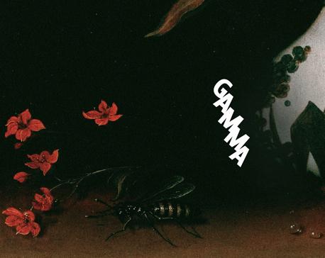 GAMMA_07 29